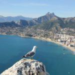 Billige Direktflüge nach Alicante