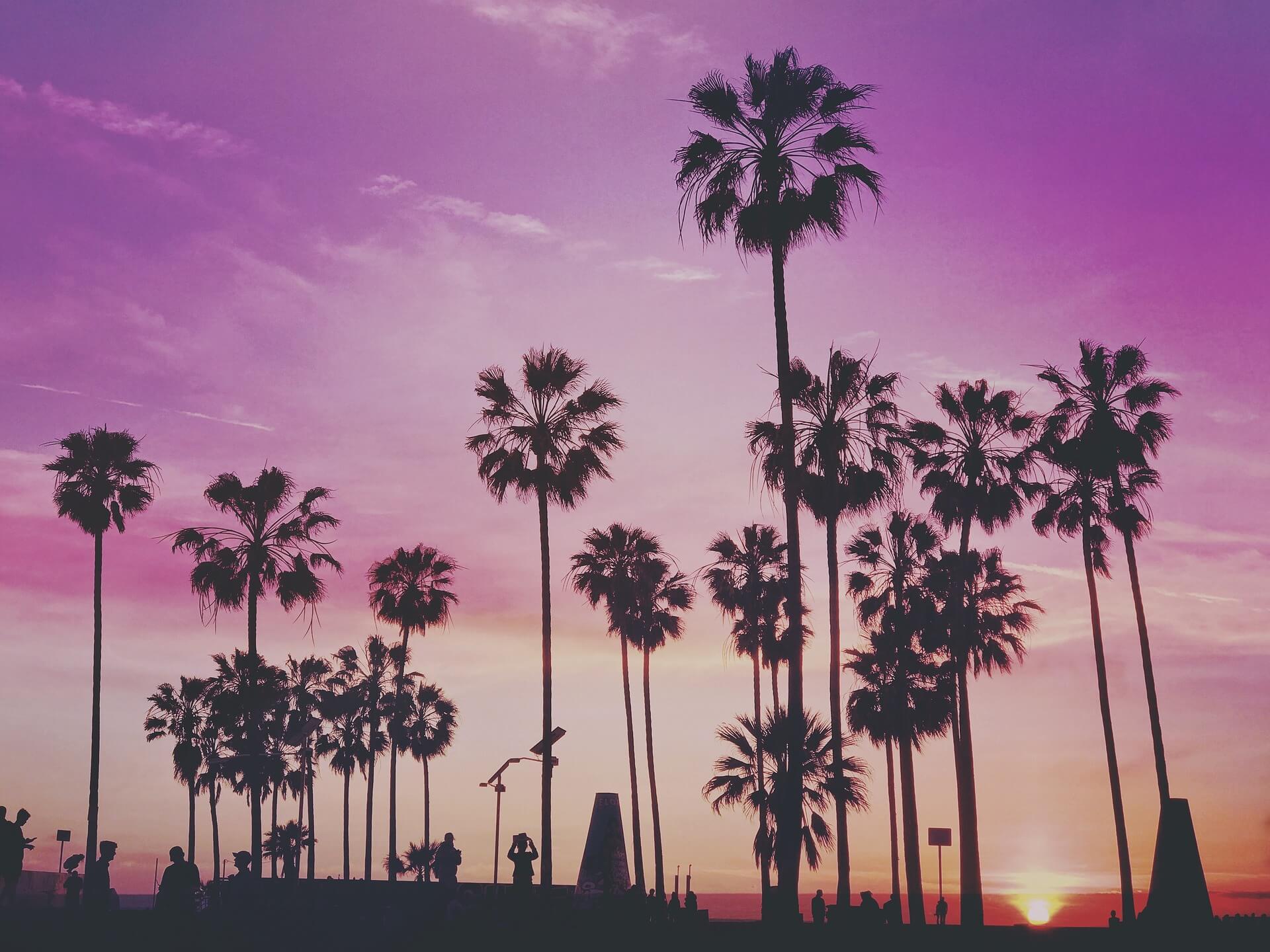 """Reiseführer Los Angeles: Dein Guide für die """"Stadt der Engel"""""""