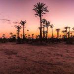 Billige Direktflüge nach Oujda