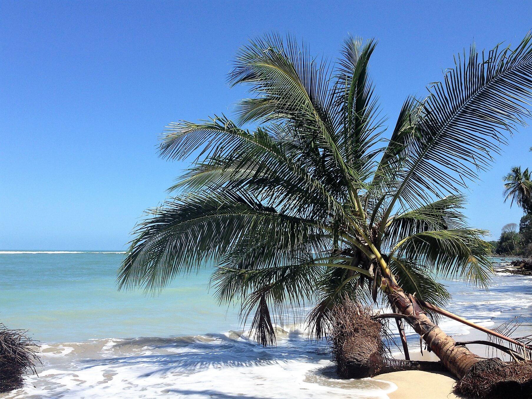 Direktflüge und Billigflüge nach Costa Rica