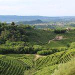 Billige Direktflüge nach Treviso